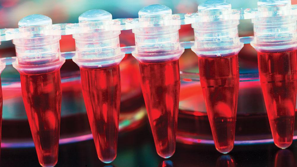 FDA Sharpens its Focus on Regenerative Medicine Regulation
