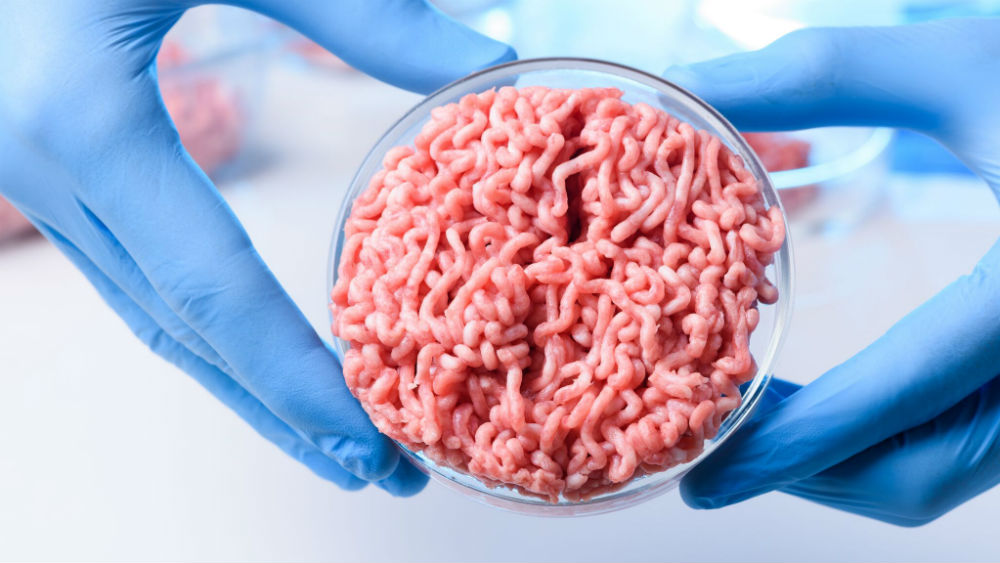 Image result for cultured meat